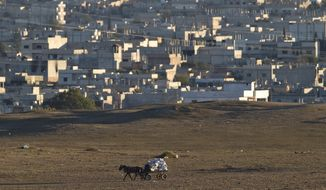 A man rides rides on a horse-pulled cart back dropped by the Syrian city of Kobani, seen from a hilltop outside Suruc, on the Turkey-Syria border Thursday, Nov. 6, 2014. Kobani, also known as Ayn Arab, and its surrounding areas, has been under assault by extremists of the Islamic State group since mid-September and is being defended by Kurdish fighters. (AP Photo/Vadim Ghirda)