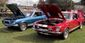 1968_GT500_and_GT350