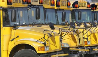 Public school buses. (AP Photo/Seth Perlman)