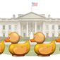 Getting your Ducks in a Row Illustration by Greg Groesch/The Washington Times