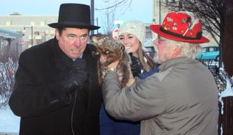 In this photo provided by Christopher Mertes, Sun Prairie Mayor Jon Freund, left, leans in for Jimmy's prognostication just before being bitten on ear by the groundhog during the Groundhogs Day celebration Monday, Feb. 2, 2015 in Sun Prairie, Wis. Freund flinched, and learned you don't want to get to close to a groundhog, but went on with his translation of Jimmy's prediction that there would be an early spring. (Associated Press/The Star, Christopher Mertes)