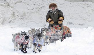 Denali Park, Alaska, musher Jeff King enters Carmacks, Yukon, by way of the Yukon River during the Yukon Quest International Sled Dog Race on Sunday, Feb. 8, 2015. (AP Photo/The Canadian Press, Marcel Vander Wier, Whitehorse Star) ** FILE **