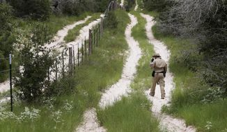 In this Sept. 5, 2014, file photo, a U.S. Customs and Border Protection Air and Marine agent looks for signs along trail while on patrol near the Texas-Mexico border near McAllen, Texas. (AP Photo/Eric Gay, File)