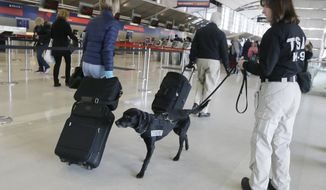 Transportation Security Inspector Cara Ropp and Nestle check out passengers at the Detroit Metropolitan Airport, Thursday, Feb. 19, 2015, in Romulus, Mich. The TSA showed off Nestle who is being used to detect explosives and explosive components at the airport. The passenger screening canines, or PSCs, are being used to identify and locate potential explosive threats at security checkpoints. (AP Photo/Carlos Osorio)