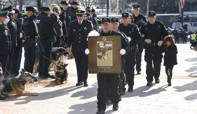 Officer Phil Lerza (second from right) walks with his family behind fellow Pittsburgh police officers carrying a photo of Lerza's K-9 partner, Rocco, during the funeral procession in Pittsburgh on Feb. 7, 2014. John Rush, 22, who was on trial for stabbing and killing the Pittsburgh police dog and injuring officers was found guilty Dec. 15, 2014, on 11 of 12 charges against him. (Associated Press) **FILE**