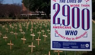 Students protesting a pro-life display at University of Texas, Arlington gathered more than 200 signatures on Wednesday to have the 2,900 wooden crosses removed from the lawn at Central Library Mall. (Twitter/@PorLifeMavs)