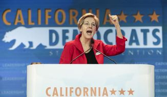 U.S. Sen. Elizabeth Warren, D-Mass., speaks at the California Democrats State Convention in Anaheim, Calif., on Saturday, May 16, 2015. (AP Photo/Damian Dovarganes)