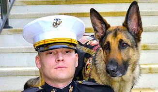 Retired USMC Capt. Jason Haag and his canine partner Axel are among those to be honored Tuesday at a K9s for Warriors charity event. (K9s for Warriors)