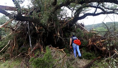 Alaena Tate, a member of a search and rescue team, looks through debris for people who were still missing after heavy flooding Wednesday, May 27, 2015, around Umphery Ranch located between Wimberley and San Marcos, Texas. (Gabe Hernandez/Corpus Christi Caller-Times via AP)