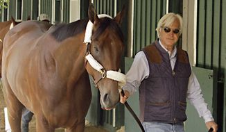 ADVANCE FOR WEEKEND EDITIONS, MAY 30-31 - FILE- In this May 13, 2015, file photo, Hall of Fame trainer Bob Baffert walks American Pharoah around the stakes barn at Pimlico Race Course in Baltimore. Wearing a cowboy hat and boots, Baffert had already conquered the quarter horse world and was ready to take aim at the bigger money and prestige offered by training thoroughbreds. It wasn't long before he piled up 11 wins in Triple Crown races and ditched his big hat but kept the boots. (AP Photo/Garry Jones, File)