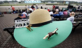 Donna Zirbes-Steinmetz, of Lindenhurst, N.Y., wears a race-themed hat before the 147th running of the Belmont Stakes horse race at Belmont Park, Saturday, June 8, 2015, in Elmont, N.Y.  American Pharoah will try for a Triple Crown when he runs in Saturday's race.(AP Photo/Jason DeCrow)