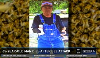 Dee Daugherty, 65, is dead after a swarm of bees attacked him as he was mowing a neighbor's lawn to repay a favor. (WFAA)