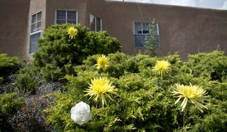 "This June 27, 2015 photo shows flowers placed in the shrubs outside the house where 17-year-old Jaydon Chavez-Silver was shot and killed while socializing with a group of other teenagers in Albuquerque, N.M. A New Mexico dispatcher has resigned after telling a panicked 911 caller who was trying to save Jaydon Chavez-Silver's life to ""deal with it yourself."" (Marla Brose/Albuquerque Journal via AP)"