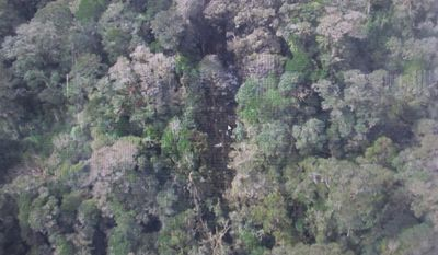 This photo released by the National Search and Rescue Agency (BASARNAS) of Indonesia Monday, Aug. 17 shows the part of the wreckage that BASARNAS identified as of the missing Trigana Air Service flight that crashed in Oksibil, Papua, Indonesia. (The National Search and Rescue Agency of Indonesia via Associated Press)