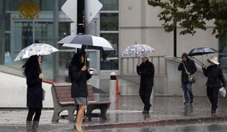 Umbrellas are out in force as pedestrians walk through the rain along San Fernando Street, Monday, Nov. 2, 2015, in downtown San Jose, Calif. The first winter-like storm of the season brought rain and snow to California on Monday, triggering traffic accidents including a 20-vehicle crash in the southern San Joaquin Valley. (Karl Mondon/Bay Area News Group via AP)