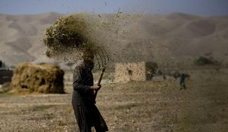 In this Nov. 5, 2010, file photo, an Afghan farmer threshes hay in Sangin, Afghanistan. Taliban gunmen have overrun a strategic district in the southern province of Helmand, delivering a serious blow to government forces, Afghan officials said on Monday, Dec. 21, 2015. (AP Photo/Dusan Vranic, File) ** FILE **