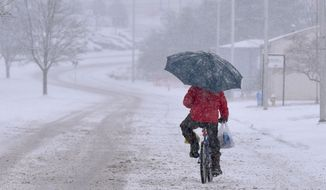 A man on a bicycle, holding both an umbrella and his groceries, tries to pedal through the snow on Bob Morrison Blvd Wednesday afternoon, Jan. 20, 2016, in in Bristol Va.  (Andre Teague/The Bristol Herald-Courier via AP) MANDATORY CREDIT