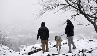 David Filchak, left, of Norwood, N.J., and Darren Baskinger, right, of Pompton Lakes, N.J., and his 5-year-old English mastiff, Ellie, look out onto Paterson from Garret Mountain Reservation during the snowstorm on Monday, Feb. 15, 2016.. (Danielle Parhizkaran/Northjersey.com via AP)