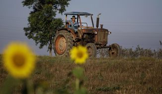 In this Feb. 22, 2011, file photo, a farmer drives his tractor in Pinar del Rio, Cuba. The Obama administration has approved the first U.S. factory in Cuba in more than half a century, allowing a pair of former software engineers to build a plant assembling as many as 1,000 small tractors a year. The partners were notified by Treasury Department officials in February 2016. (AP Photo/Javier Galeano, File)