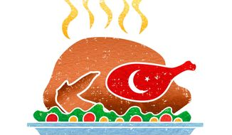 Problems Facing Turkey Illustration by Greg Groesch/The Washington Times