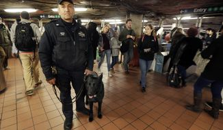 A New York City Police Department Transit officer and his dog patrol at the subway station under Grand Central Terminal, in New York, Tuesday, March 22, 2016. Authorities are increasing security throughout New York City following explosions at the airport and subway system in the Belgian capital of Brussels.  (AP Photo/Richard Drew)