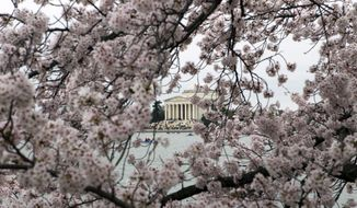 The Jefferson Memorial is seeing through cherry blossom trees in full bloom on the tidal basin in Washington, Sunday, March 27, 2016.  ( AP Photo/Jose Luis Magana) **FILE**