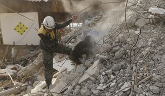 A dog rescue unit searches for survivors in the rubble of an earthquake collapsed building in Pedernales, Ecuador, Tuesday, April 19, 2016. The strongest earthquake to hit Ecuador in decades flattened buildings and buckled highways along its Pacific coast, sending the Andean nation into a state of emergency. (AP Photo/Dolores Ochoa)