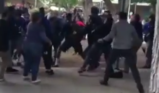A massive fight at a Los Angeles high school involving dozens of students was caught on cellphone video on May 9.