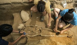 This Tuesday, June 28, 2016 photo shows archeologists excavating an ancient Phillstine cemetery near Ashkelon, Israel. The recent archaeological discovery in Israel may help solve a biblical mystery of where the ancient Philistines came from. A team of archaeologists excavating at the site of the biblical city of Ashkelon have announced it found the first Philistine cemetery ever to be discovered. Now the team is performing DNA, radiocarbon and other tests on bone samples found at the cemetery, dating to the 11th to 8th centuries B.C. (AP Photo/Tsafrir Abayov)