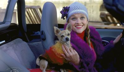 "Actress Reese Witherspoon and her pet pooch in the movie ""Legally Blonde."""