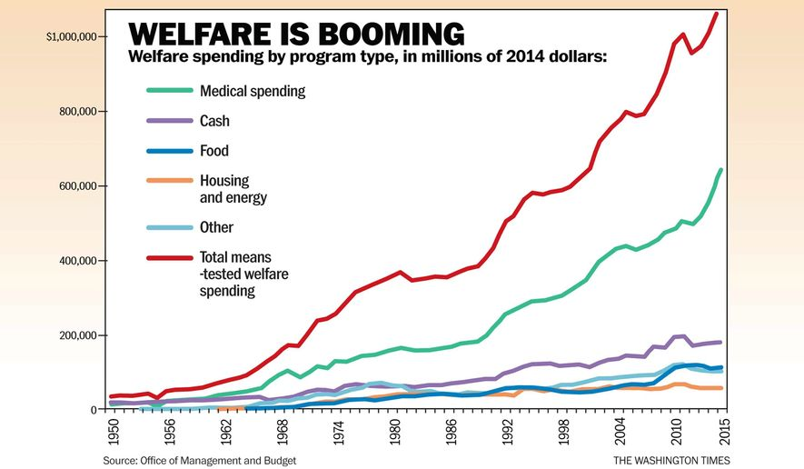 Image result for people on welfare by year 2016