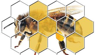 Illustration on the health and abundance of bees by Alexander Hunter/The Washington Times