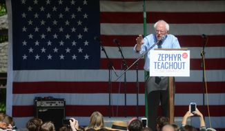 U.S. Sen. Bernie Sanders, I-Vt., addresses several hundred people Friday, Sept. 16, 2016 at Hasbrouck Park in New Paltz, N.Y., during a campaign rally for Democratic congressional candidate Zephyr Teachout.  Teachout is running in New York's 19th Congressional District against Republican John Faso.    (Tania Barricklo/The Daily Freeman via AP)