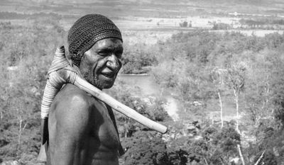In this Feb. 20, 1962 file photo, an elder warrior with a stone axe over his shoulder stands over the Baliem Valley in the central mountain range of Papua New Guinea. New research published Wednesday, Sept. 21, 2016 suggests that the genetic ancestry of people living outside Africa can be traced almost completely to a single exodus of humans from that continent long ago. But some native islanders of Papua New Guinea may also carry a tiny legacy from an earlier exit. (AP Photo)