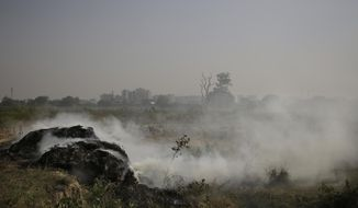 A heap of grass and garbage burns in a field on the outskirts of New Delhi, India, Saturday, Oct. 22, 2016. The Indian capital, laboring under the label of being the world's most polluted city, is trying something new to help clean up its air. A smartphone application that allows citizens to report the presence of construction dust or the burning of leaves and garbage in public parks to authorities was launched Friday. (AP Photo/Altaf Qadri)