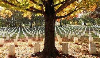 FILE - In this Oct. 28, 2010, file photo, fall leaves lay among the gravestones at Arlington National Cemetery in Arlington, Va. The cemetery gets between 3 and 4 million visitors a year.  (AP Photo/Jacquelyn Martin, File )