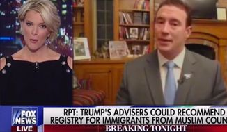 Fox News host Megyn Kelly squared off with Former Navy SEAL and Trump supporter Carl Higbie on Wednesday, Nov. 16, 2016. (Fox News screenshot)