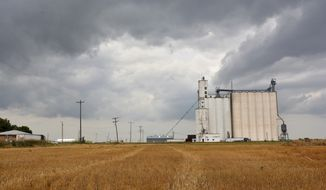 This July 9, 2015 photo, shows the Central Prairie Coop grain elevator in Frederick, Kan.,the town's only operational business. The residents of the small central Kansas town decided to dissolve the town and called for the election required by state law. But a mistake by poll workers led to people outside the town voting, and keeping it alive as an incorporated city. (Jacob Byk/The Hutchinson News via AP)