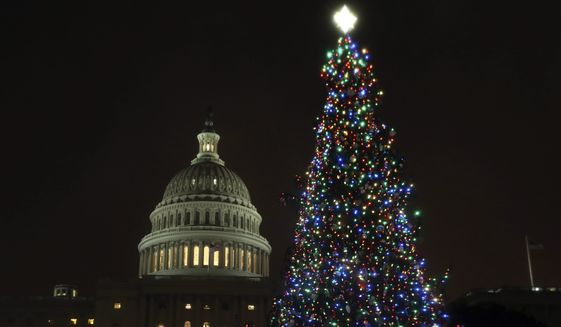 The U.S. Capitol Christmas Tree is lit up during a ceremony on the West Front of the Capitol in Washington, Tuesday, Dec. 6, 2016. The Capitol Christmas Tree is an 80-foot Engelmann Spruce from the Payette National Forest in Idaho. (AP Photo/Manuel Balce Ceneta)