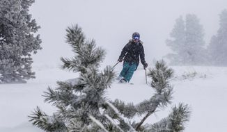 Jenn Vernick skies down Ourzo trees while it dumps snow on Wednesday, Jan. 4, 2017, in Vail, Colo. Stiff winds toppled a towering evergreen tree into an Oregon home, killing an 8-year-old girl, while blizzard conditions closed major highways and triggered a small avalanche in the Sierra Nevada on Wednesday as wet winter storms pummeled much of the West. Heavy snow was also expected in Colorado. (Chris Dillmann/Vail Daily via AP)