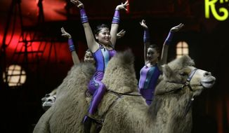 """Ringling Bros. and Barnum & Bailey acrobats ride camels during a performance Saturday, Jan. 14, 2017, in Orlando, Fla. The Ringling Bros. and Barnum & Bailey Circus will end the """"The Greatest Show on Earth"""" in May, following a 146-year run of performances. Kenneth Feld, the chairman and CEO of Feld Entertainment, which owns the circus, told The Associated Press, declining attendance combined with high operating costs are among the reasons for closing. (AP Photo/Chris O'Meara)"""