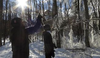 In this Sunday, Jan. 15, 2017 photo, USDA Forest Service researchers Paul Schaberg, left, and Lindsey Rustad, right, examine the aftermath of a manufactured ice storm at the Hubbard Brook Experimental Forest in Woodstock, N.H. A team of scientists sprayed water on the trees the night before as part of a study designed to examine the effects of ice on northern forests. (AP Photo/Holly Ramer)