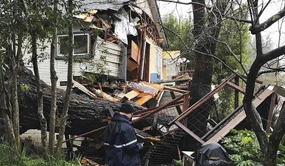 This photo provided by the Sebastopol, Calif., Fire Department shows a giant oak tree that has fallen, heavily damaging a home on Vine Avenue in Sebastopol, Calif., Tuesday, Feb. 7, 2017. No injuries were reported, but the back half of the house was destroyed. (Chief Bill Braga/Sebastopol Fire Department via AP)