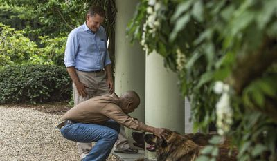 "In this 2013 photo provided Sony Pictures Entertainment, actor Denzel Washington, squatting, pets Zanzibar, right, a Leonberger dog on the set of the movie ""The Equalizer,"" with actor Bill Pullman, standing, and another Leonberger, Mr. America, center. The dogs are owned by Morgan Avila, of Lynbrook, N.Y., who will be showing their Leonberger housemate, Magneto, at the 2017 Westminster Kennel Club show. (Sony Pictures Entertainment via AP)"