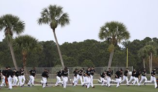 Miami Marlins players stretch during a spring training baseball workout Tuesday, Feb. 14, 2017, in Jupiter, Fla. (AP Photo/David J. Phillip)