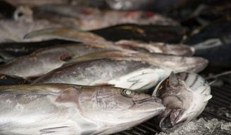 All seafood importers will have to track and report where all fish were caught under the Obama-era Seafood Traceability Rule. (Associated Press)