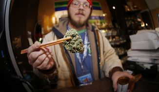 In this Friday, Dec. 9, 2014, file photograph, Matt Hart holds up a bud of Lemon Skunk, the most potent strain of marijuana available at the 3D Dispensary in Denver. (AP Photo/David Zalubowski, file)