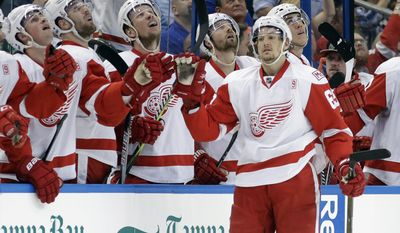 Detroit Red Wings defenseman Danny DeKeyser (65) celebrates with the bench after his goal against the Tampa Bay Lightning during the second period of an NHL hockey game Thursday, March 30, 2017, in Tampa, Fla. (AP Photo/Chris O'Meara)