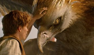 "Newt Scamander pets a Thunderbird in ""Fantastic Beasts and Where to Find Them,"" now available on 4K Ultra HD from Warner Bros. Home Entertainment."