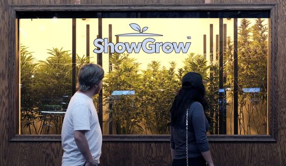 This April 15, 2017 photo visitors view marijuana plants on display at ShowGrow, a medical marijuana provider in downtown Los Angeles. Americans think it's safer to use marijuana than opioids to relieve pain, but they were less comfortable with children and pregnant women using pot to treat medical conditions, according to a new Yahoo/Marist poll released Monday, April 17. (AP Photo/Richard Vogel)